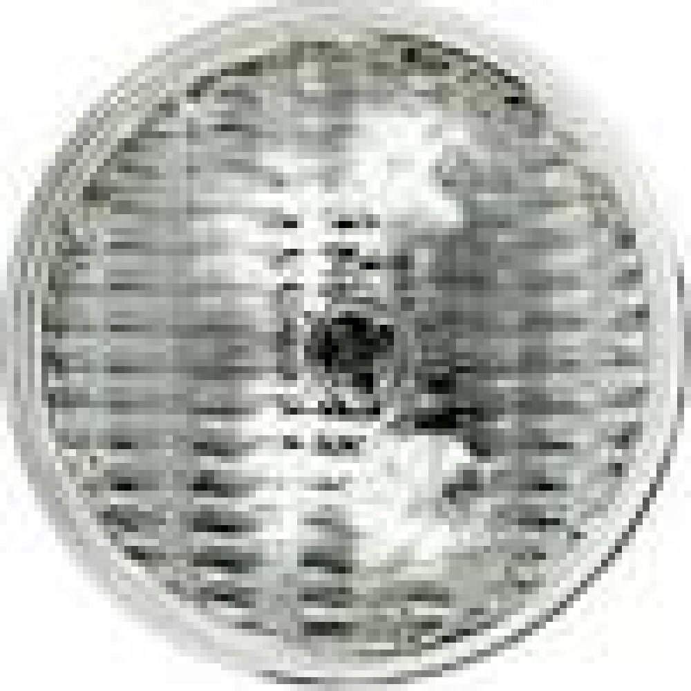 GE 19877 35PAR36/H/FL30 12V